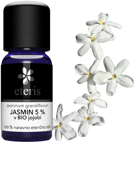 Jasmin-u- jojobi