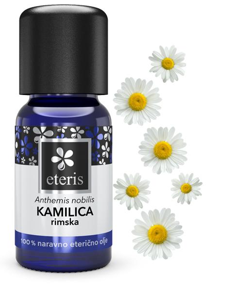 Kamilica rimska+rastlina III